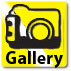 View Virtual Gallery